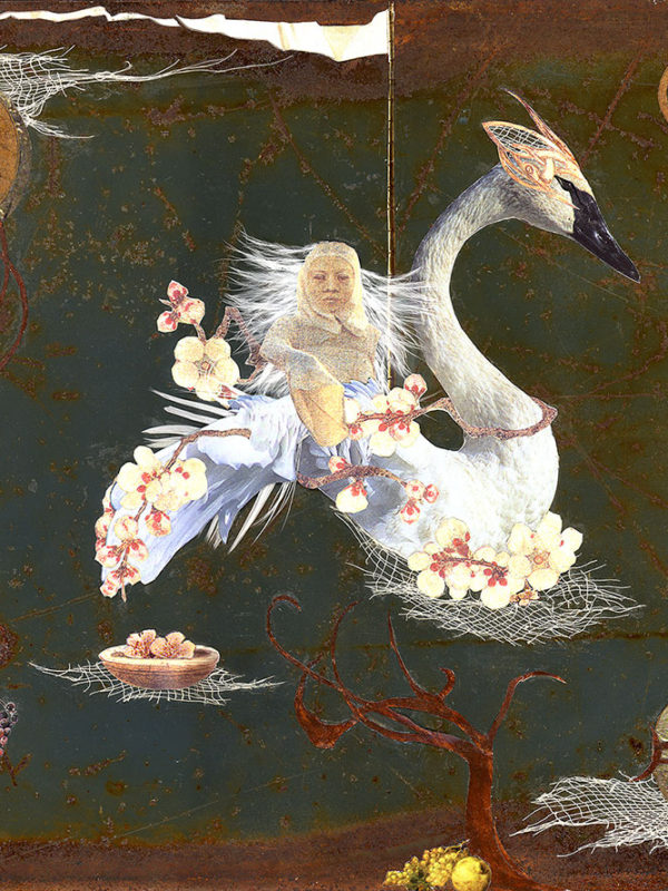 Swan Maiden ~ Found Fables Tales of Wonder Tales of Woe
